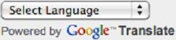 Google Website Translator Select Language