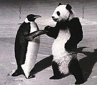 Google Launches Panda Update 3.9 (But Where's The Penguin?)
