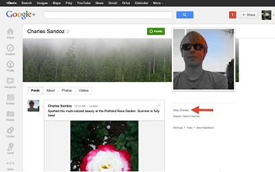 Google+ Mute Friend