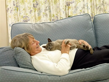 cats for the elderly