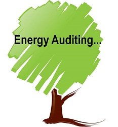 Business Energy Audit