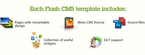 MotoCMS Flash Template